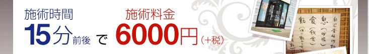 施術時間15分前後で施術料金6000円(+税)